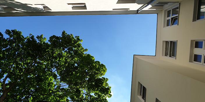 Blick nach oben in den Himmel vom Innenhof eines Hauses mit Baum
